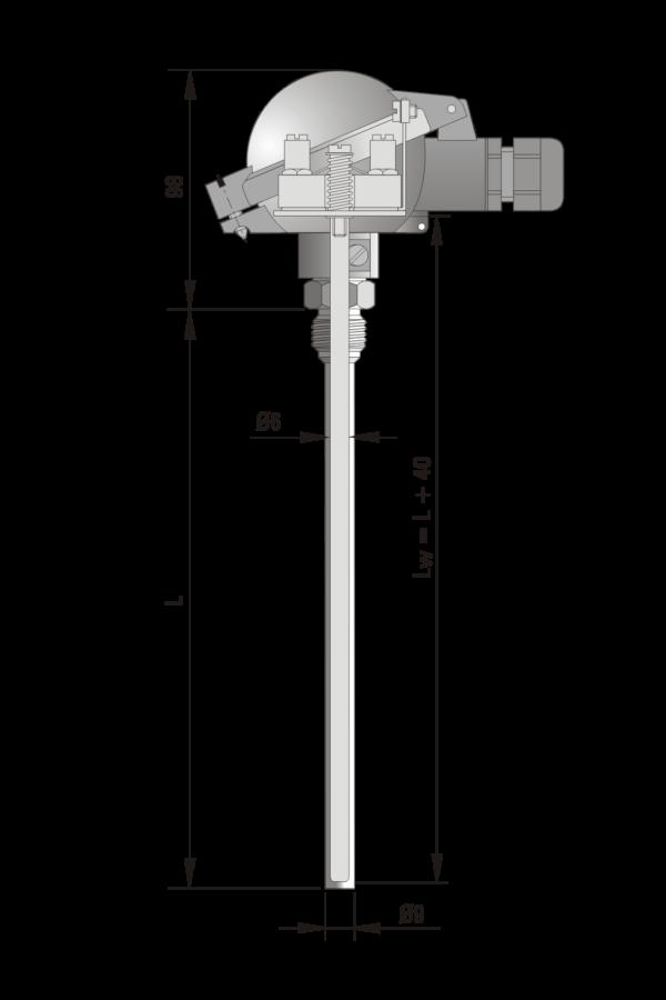 Czujnik temperatury TP-Exi-681